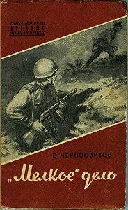 Владимир Черносвитов - «Мелкое» дело