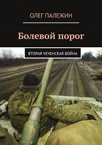Олег Палежин -Болевой порог. Вторая чеченская война