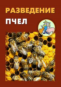 Илья Мельников -Разведение пчел