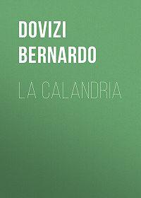 Bernardo Dovizi -La Calandria