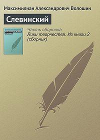 Максимилиан Александрович Волошин -Слевинский