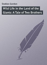 Gordon Stables -Wild Life in the Land of the Giants: A Tale of Two Brothers