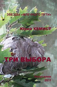 Юрий Кемист -Три выбора