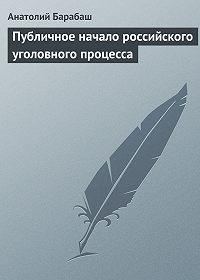 Анатолий Барабаш - Публичное начало российского уголовного процесса