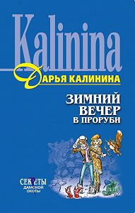 Дарья Калинина -Зимний вечер в проруби