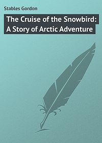 Gordon Stables -The Cruise of the Snowbird: A Story of Arctic Adventure
