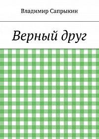 Владимир Сапрыкин -Верныйдруг
