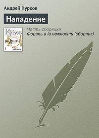 Андрей Курков -Нападение