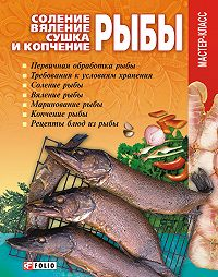 Владимир Онищенко -Соление, вяление, сушка и копчение рыбы