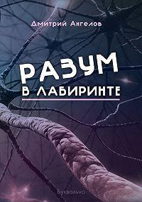 Дмитрий Ангелов -Разум влабиринте