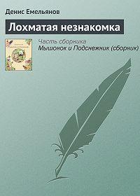 Денис Емельянов -Лохматая незнакомка