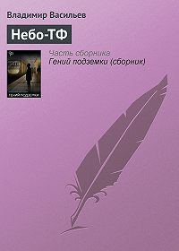 Владимир Васильев -Небо-ТФ