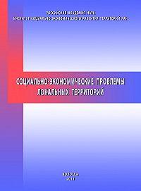 Николай Ворошилов -Социально-экономические проблемы локальных территорий
