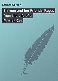 Gordon Stables -Shireen and her Friends: Pages from the Life of a Persian Cat