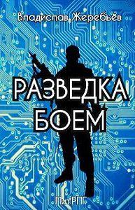 Владислав Жеребьёв -Разведка боем