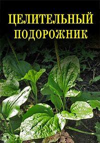 Иван Дубровин -Целительный подорожник