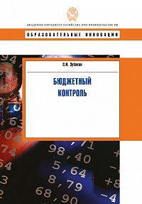 Семен Зубакин -Бюджетный контроль