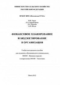 Денис Мурзин -Финансовое планирование и бюджетирование в организации