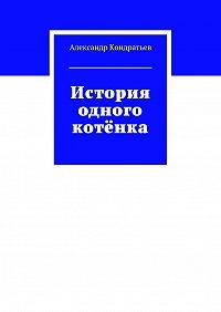 Александр Кондратьев -История одного котёнка