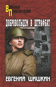 Евгений Шишкин -Добровольцем в штрафбат
