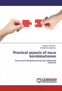 Николай Камзин, Елизавета Камзина - Practical aspects of neue kombinationen. Essence of entrepreneurship and settlement relations
