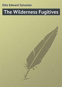Edward Ellis -The Wilderness Fugitives