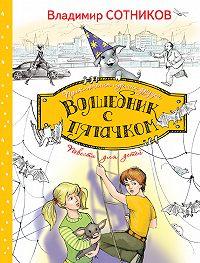 Владимир Сотников -Волшебник с пятачком