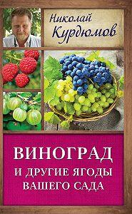 Николай Курдюмов -Виноград и другие ягоды вашего сада