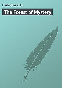 James Foster -The Forest of Mystery