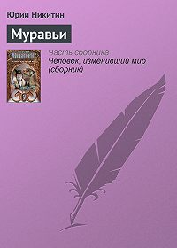 Юрий Никитин -Муравьи