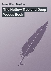 Albert Paine -The Hollow Tree and Deep Woods Book