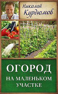 Николай Курдюмов -Огород на маленьком участке