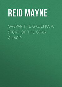 Mayne Reid -Gaspar the Gaucho: A Story of the Gran Chaco