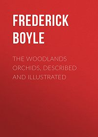 Frederick Boyle -The Woodlands Orchids, Described and Illustrated