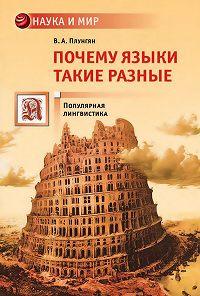 Владимир Александрович Плунгян -Почему языки такие разные