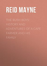 Mayne Reid -The Bush Boys: History and Adventures of a Cape Farmer and his Family