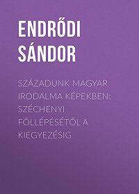 Sándor Endrődi -Századunk magyar irodalma képekben: Széchenyi föllépésétől a kiegyezésig