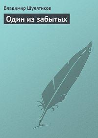 Владимир Шулятиков -Один из забытых