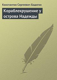 Константин Бадигин -Кораблекрушение у острова Надежды