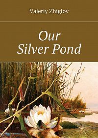 Valeriy Zhiglov - Our Silver Pond