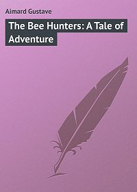 Gustave Aimard -The Bee Hunters: A Tale of Adventure