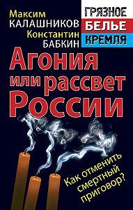 Максим Калашников -Агония или рассвет России. Как отменить смертный приговор?