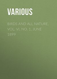Various -Birds and All Nature, Vol. VI, No. 1, June 1899
