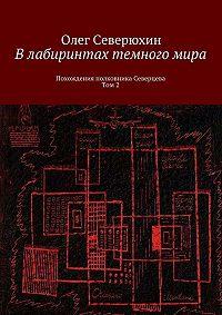 Олег Северюхин -Влабиринтах темногомира. Похождения полковника Северцева. Том2