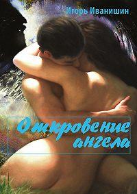 Игорь Иванишин - Откровение ангела. Психологический роман
