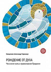 Протоиерей Александр Геронимус -Рождение от Духа. Что значит жить в православном Предании