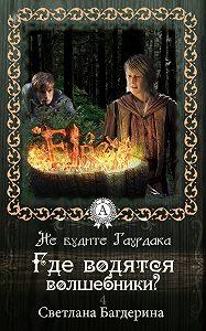 Светлана Багдерина -Где водятся волшебники?