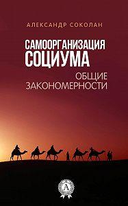 Александр Соколан -Самоорганизация социума. Общие закономерности