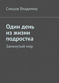 Владимир Синцов - Один день изжизни подростка. Замкнутыймир