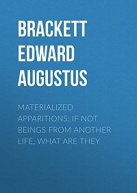 Edward Brackett -Materialized Apparitions: If Not Beings from Another Life, What Are They